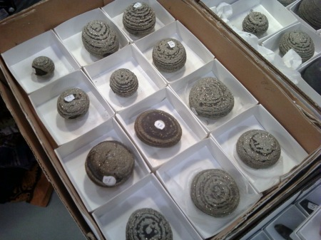 Pyrite Concretions from Viven Schipera's Booth