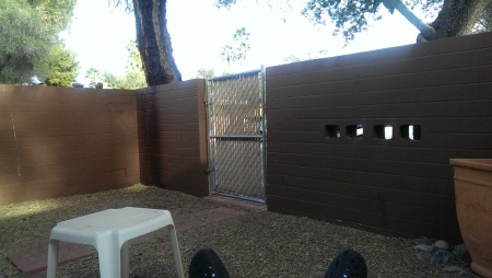 Our_Back_Yard_at_Tucson